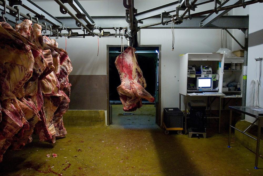 Abattoir et ateliers de transformation à Ruffec au coeur du Poitou-Charentes. SA Jean Levesques. Automne 2010.