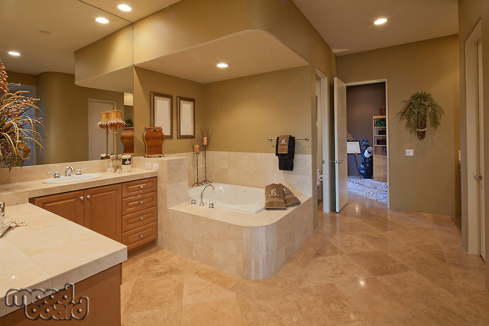 interior of large bathroom