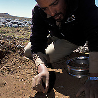 Edriss Abou, setting trap for Ethiopian Wolf. Bale mountains. Ethiopia.