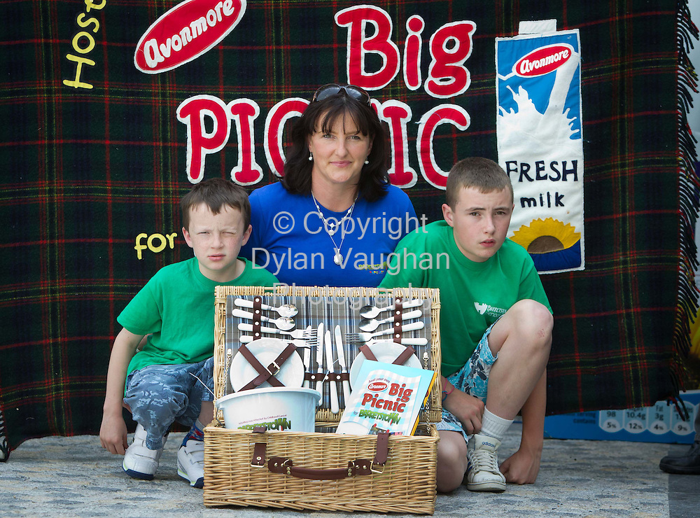 22/8/2010.free picture no charge for use.Pictured at the 'Avonmore Big Picnic for Barretstown'  in Workhouse Square, MacDonagh Junction were Delahunty Family from left James aged 9, Ann and Thomas aged 13..The Kilkenny 'Avonmore Big Picnic for Barretstown' was organised by two local families, the Delahunty's and the Olsen's, who have attended Family Camps in Barretstown, the therapeutic camp for children with serious illnesses based in Kildare...To have a picnic this summer and raise much needed funds for children affected by cancer pick up an Avonmore milk carton in any local shop or visit www.sendmorefamilies.com.Picture Dylan Vaughan.