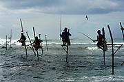 Stilt fishermen at dawn, Unawatuna, near Galle, Sri Lanka