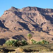 Mount Kissane - Agdz