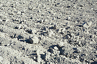 Dry dirt of empty tilled agricultural field.