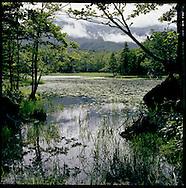 Second of the Shiretoko Five Lakes, Shiretoko National Park, an UNESCO World Heritage Site, Hokkaido, Japan.