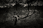 She felt the solitude; she was alone and content to be so. She could walk for hours if she wanted to, without finding another soul. In a clearing in the dark woods grew a special tree, ancient and distorted, its wise old boughs now a large hand, enticing, beckoning. <br /> <br /> The nubile young woman silently climbed onto its palm and slowly and purposefully eased her legs either side of a thick mossy branch, a large velvet finger now pressing into her womanhood. Her bodyweight pressed her lower onto the hard wood and she lay backwards, abandoning herself fully and completely to the sensuality of her position. The sticky heat of the day endured and as she lay there, gasping the warm air, she felt the first drops of perspiration trickling down her naked flesh.