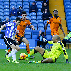 Sheffield Wednesday v Wolves | Championship | 20 December 2015