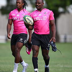 DURBAN, SOUTH AFRICA - APRIL 10: S'busiso Nkosi of the Cell C Sharks with Chiliboy Ralepelle of the Cell C Sharks during the Cell C Sharks training session at Jonsson Kings Park on April 10, 2018 in Durban, South Africa. (Photo by Steve Haag/Gallo Images)