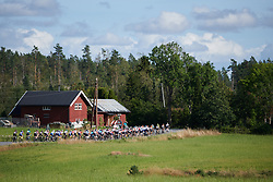 The peloton head into the trees during Ladies Tour of Norway 2019 - Stage 3, a 125 km road race from Moss to Halden, Norway on August 24, 2019. Photo by Sean Robinson/velofocus.com
