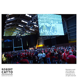 Lions Fans at the British & Irish Lions v. All Blacks Second Test at Lynx Terminal, Wellington, New Zealand.<br />