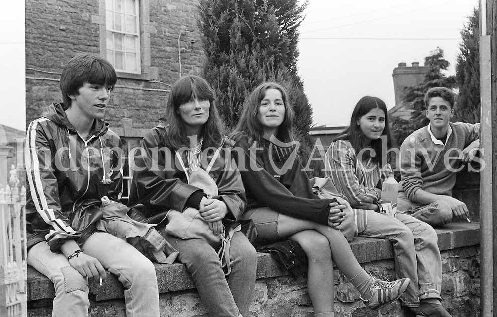 Slane Castle concert 1982 fans enjoying themselves.<br /> (Part of the Independent Newspapers Ireland/NLI collection.)