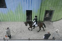 Hologne-Joux Françoise - Born<br /> World Equestrian Games Aachen 2006<br /> Photo © Hippo Foto