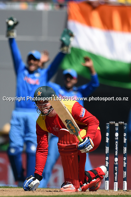 Indian slip cordon appeal for a caught behind chance of Zimbabwe captain Brendan Taylor during the ICC Cricket World Cup match between India and Zimbabwe at Eden Park in Auckland, New Zealand. Saturday 14 March 2015. Copyright Photo: Raghavan Venugopal / www.photosport.co.nz