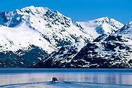 small touring boat in Glacier Bay