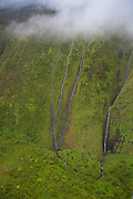 Base of Mt Waialeale, wettest spot on earth, Kauai, Hawaii