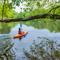 A woman kayaks on the Merrimack River in Boscawen, New Hampshire.