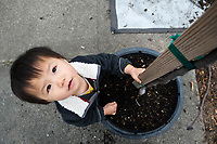 21 Month Old Toddler at Richmond Trees Planting Event, Richmond, California