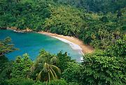 6212-1021 ~ Copyright: George H. H. Huey ~ The beach at Little Englishman's Bay near the village of Castara. Caribbean coast of the island of Tobago. Trinidad andTobago.