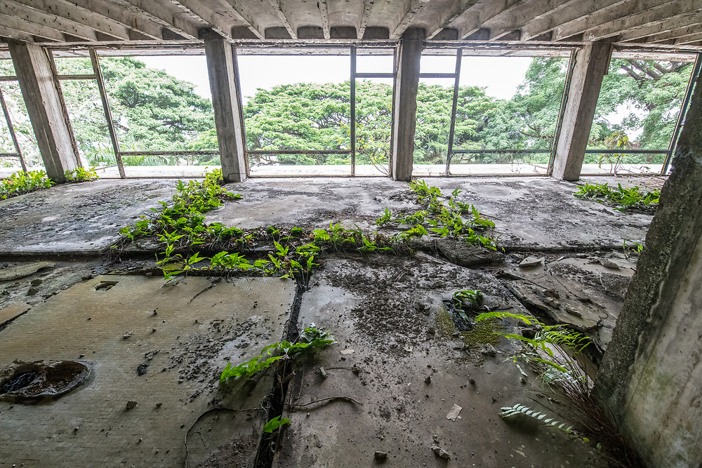 Overgrown vegetation invades the abandoned Ducor Hotel, once the most prominent hotels in Monrovia, Liberia