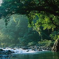 Philippines Biodiversity
