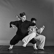Wudang tai chi application B&W