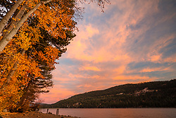 """Donner Lake in Autumn 7"" - Sunset photograph of cottonwood trees with yellow fall foliage along the shoreline of Donner Lake in Truckee, California"
