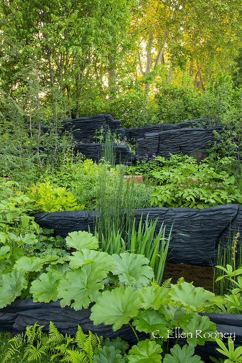 The Resilience Garden designed by Sarah Eberle at the RHS Chelsea Flower Show 2019.