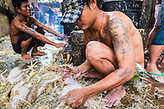 17 JUNE 2013 - YANGON, MYANMAR: A man plucks freshly killed chickens near Aung Mingalar Jetty in Yangon. Yangon, formerly Rangoon, is the largest city in Myanmar. It is the former capital of the Southeast Asian country. It's still Myanmar's economic capital.    PHOTO BY JACK KURTZ