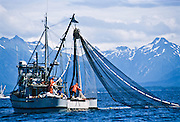 Alaska. Salmon seine commercial fishing boat.