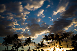 Sunset and Palm Trees, Maui, Hawaii