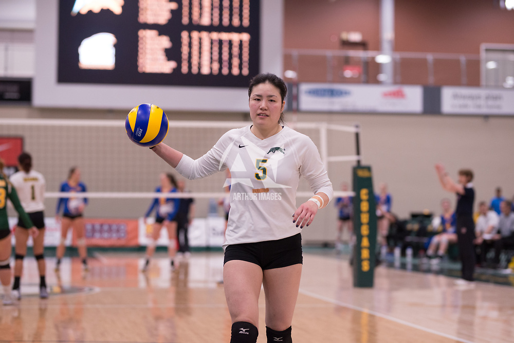 2nd year setter Satomi Togawa (5) of the Regina Cougars in action during Women's Volleyball home game on February 2 at Centre for Kinesiology, Health and Sport. Credit: Arthur Ward/Arthur Images