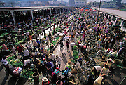 The Sunday market in the village of Menghan in the southwestern province of Jinhong, near Burma, Jinhong, China. (Man Eating Bugs page 102,103)