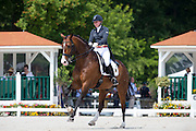 Vivien Niemann - Cipollini 3<br /> FEI European Dressage Championships for Young Riders and Juniors 2013<br /> © DigiShots