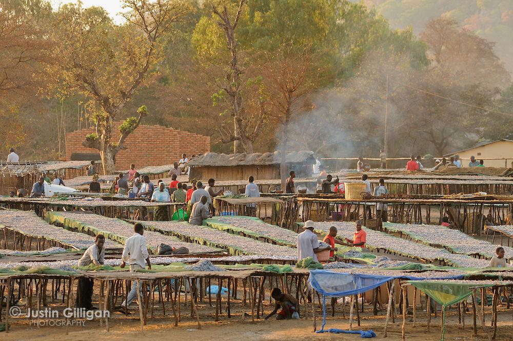 Usipa drying racks at Senga Bay, Lake Malawi, Malawi.