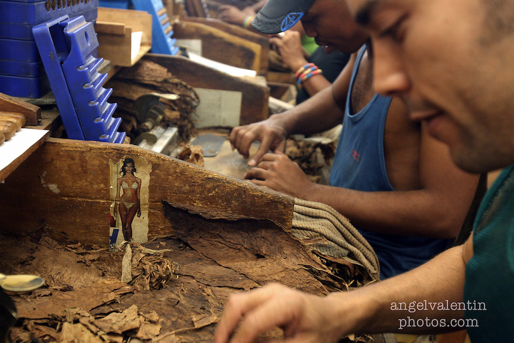 (aev) cubacigars02k------Havana, Cuba-----3.2.07-----<br /> Cigar workers put on the outer wrap on cigars in Havana's H. Upmann cigar factory. <br /> Staff Photo/Angel Valentin