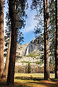 trees make a opening to , yosemite falls.