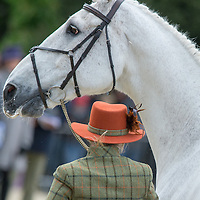 First Horse Inspection - Mitsubishi Motors Badminton International Horse Trials 2015