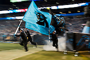 January 24, 2016: Carolina Panthers vs Arizona Cardinals. Panthers flags are run onto  the field