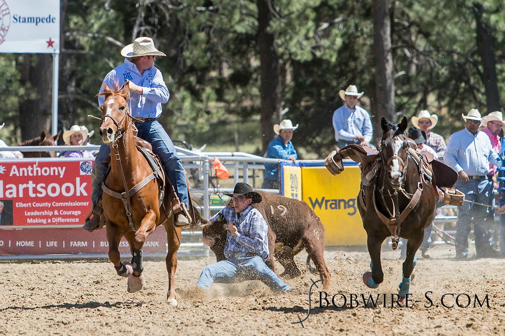 Steer wrestler Cole Dorenkamp makes his run in the first performance of the Elizabeth Stampede on Saturday, June 2, 2018.