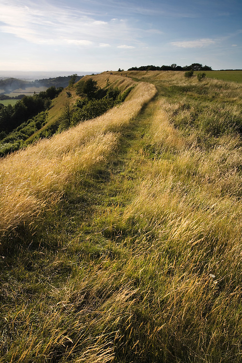 Iron age hill fort at Uley Bury on the Cotswold escarpment, Gloucestershire, England