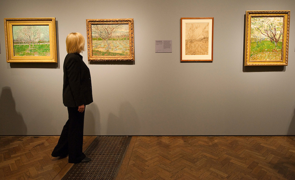 London, England January 19th  A royal Academy employee walks in front of a collections of paintings  about Provence and its colours  at the Royal Academy of Art in London on January 19th 2010.  The real Van Goh the artist and his letters opens at The Royal Academy of Arts in London...***Agreed Fee's Apply To All Image Use***.Marco Secchi /Xianpix. tel +44 (0) 771 7298571. e-mail ms@msecchi.com .www.marcosecchi.com