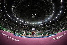 20150613 Baku 2015 European Games - Brydning