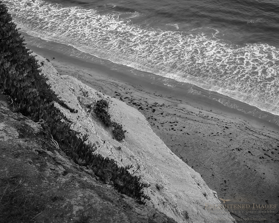 Looking down from cliff at Drakes Beach, Point Reyes National Seashore, Marin County, California