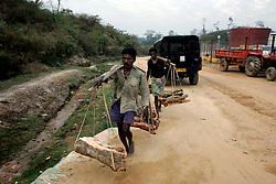 BANGLADESH SRIMANGOL 22FEB05 - Labourers carry firewood near the Unocal-owned gas plant under construction in the tea hills near Srimangal, northern Bangladesh...jre/Photo by Jiri Rezac ..© Jiri Rezac 2005..Contact: +44 (0) 7050 110 417.Mobile:  +44 (0) 7801 337 683.Office:  +44 (0) 20 8968 9635..Email:   jiri@jirirezac.com.Web:    www.jirirezac.com..© All images Jiri Rezac 20045- All rights reserved.