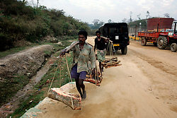 BANGLADESH SRIMANGOL 22FEB05 - Labourers carry firewood near the Unocal-owned gas plant under construction in the tea hills near Srimangal, northern Bangladesh...jre/Photo by Jiri Rezac ..© Jiri Rezac 2005..Contact: +44 (0) 7050 110 417.Mobile:  +44 (0) 7801 337 683.Office:  +44 (0) 20 8968 9635..Email:   jiri@jirirezac.com.Web:    www.jirirezac.com..© All images Jiri Rezac 20045- All rights reserved.