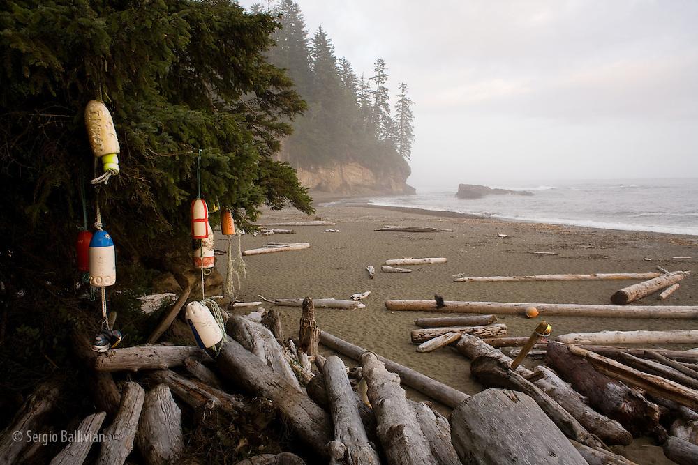 Pacific Coast Hiking Trail Vancouver Island