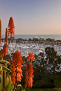 Dana Point Harbor Orange County, California At Sunset