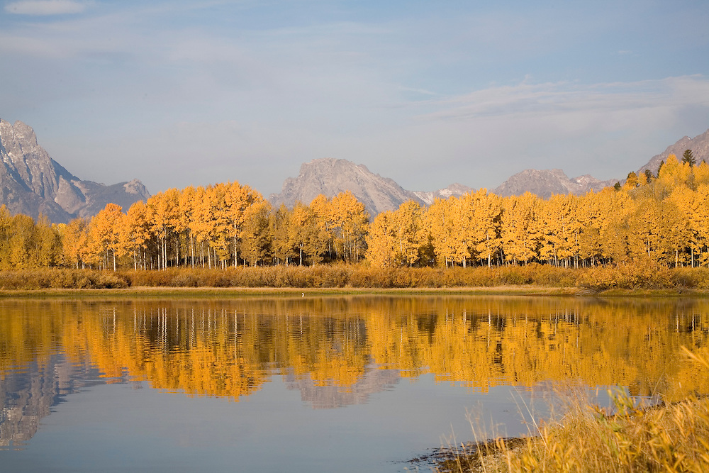 0084 Fall Colors - Grand Teton National Park, Wyoming: Oxbow Bend is the gathering place of wildlife for the Grand Teton National Park. The mirror-like water reflection is the reason photographers flock to this area. Edition on 500.