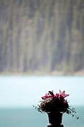 The Fairmont Chateau Lake Louise