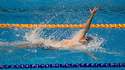 Gareth Keanof the All Stars team competes in the 16+ Men's 200m Backstroke race during the Senior Zonal Championship at the Wellington Regional Aquatic Centre in Kilbirnie in Wellington on Friday the 4th of October 2013. Photo by Marty Melville/www.photosport.co.nz