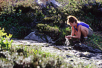A woman scoops water from a mountain creek on Whistler Mountain, BC Canada.